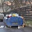 Тариф по вывозу мусора в регионе утвердят до 20 декабря