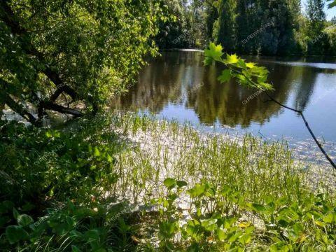 dom-derevnya-ovsyanka-semenovskiy-gorodskoy-okrug фото