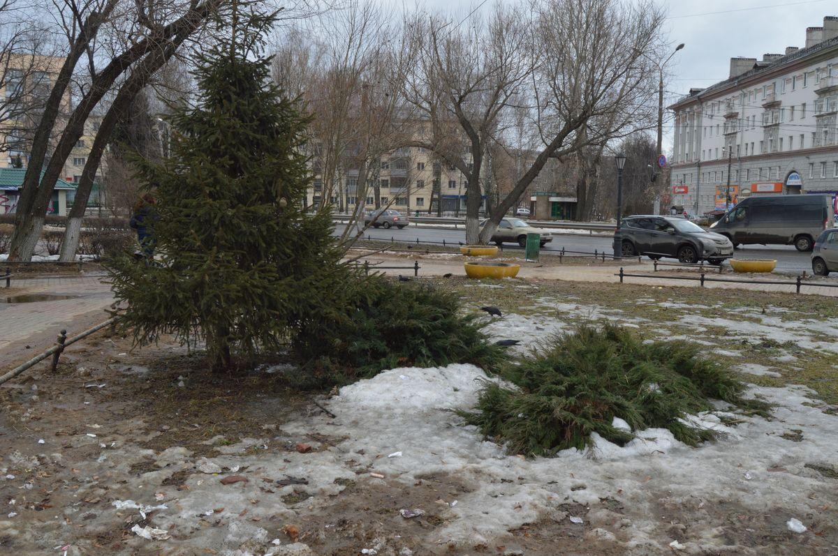 Какие парки и скверы благоустроят в 2018 году в Нижнем Новгороде? - фото 28