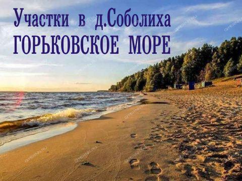 derevnya-soboliha-gorodeckiy-rayon фото
