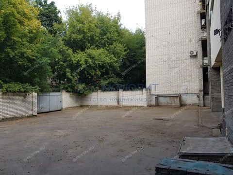 ul-fuchika-d-10a фото